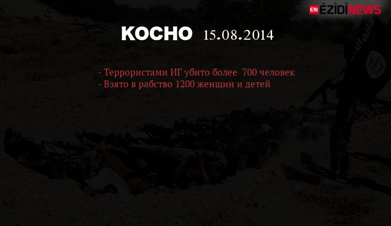 kocho23
